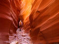 8 Dayhikes in the Canyons of Utah - Escalante & Capitol Reef