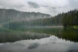 Crno Jezero Foggy Reflection print