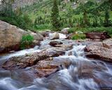 Cascade Creek print