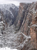 Black Canyon Snow print