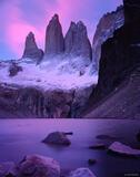 Torres Pink print
