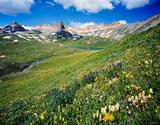 Ice Lakes Wildflowers print
