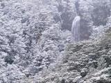 Snowy Falls print