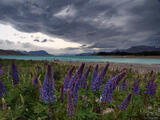 Stormy Lake Tekapo print