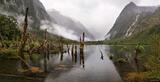 Misty Fiordland print