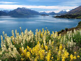 Lake Wakatipu print