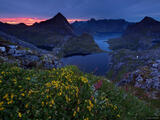 Lofoten Night print