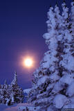 Snowy Moon print