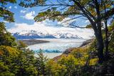 Glaciar Grey print