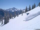 Sultan of Ski print