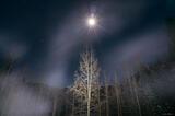 Winter's Breath print
