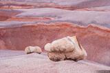 Bentonite Rocks print