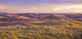 Dunes Meadow print