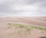 Windy Dunes print