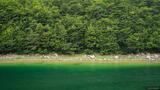Skrcko Jezero Greens print