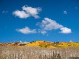 Autumn Sky print