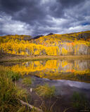 Kebler Golden Reflection print