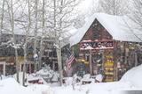 Snowy Camp 4 print