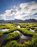Tundra Sun Ponds print