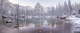 Snowy Lone Eagle Panorama print