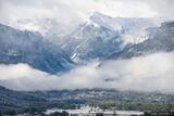 Abrams Spring Snow print