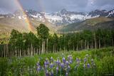 Mears Peak Rainbow print