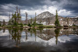 Mount Agassiz Reflection print