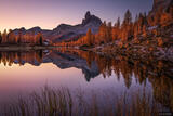 Dawn Larch Reflection print