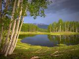 Eden Lake Glow print