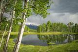 Eden Lake print