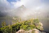 Macey Lake Fog print