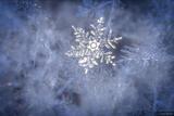 Snowflake Blues 1 print
