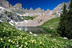 Willow Lakes, wildflowers, Eagles Nest Wilderness, Gore Range, Colorado