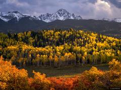 Colorado,San Juan Mountains,Sneffels Range,aspens, Mt. Sneffels