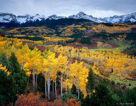 autumn, Sneffels Range, aspen, San Juan Mountains, Colorado