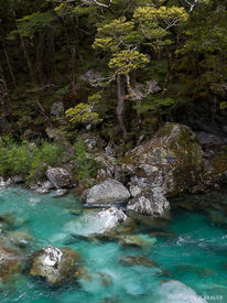New Zealand,Routeburn Track, river