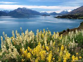 Lake Wakatipu, Queenstown, New Zealand, South Island