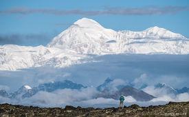 A View of Denali from Kesugi Ridge, Alaska - August 2016