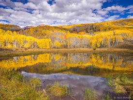 Kebler Golden Reflection 2
