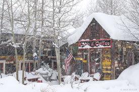 Snowy Camp 4