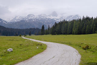 Road Into Durmitor