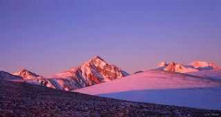 Niwot Ridge, Indian Peaks, sunrise, alpenglow, Colorado