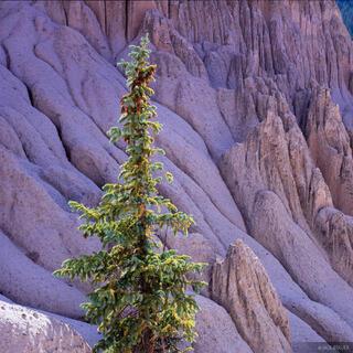 Wheeler Geologic Area, Creede, Colorado