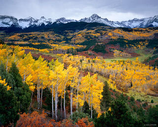 autumn, Sneffels Range, aspen, San Juan Mountains, Colorado