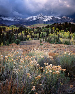Stormy Autumn, Sneffels Range, Colorado