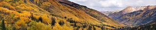 Aspens, Red Mountain Pass, Ironton, Colorado