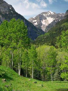 United States Mountain, San Juan Mountains, Colorado, Camp Bird Road
