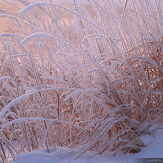 frost, snake river, wyoming