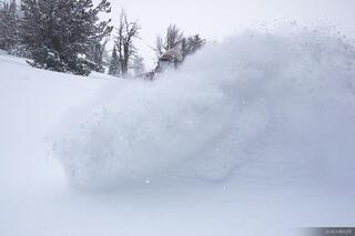 Powder Wave