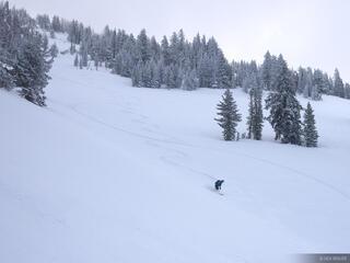 Skiing, snowboarding, tracks, Jackson Hole, Wyoming
